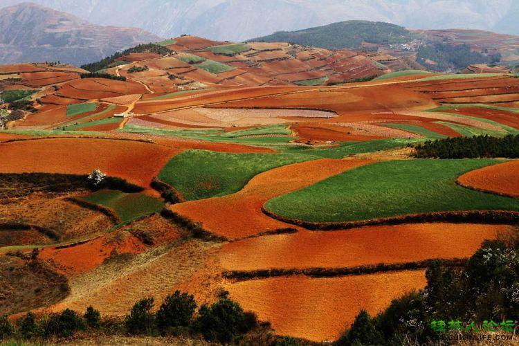 行摄(昆明-贵阳-桂林) - 风姿摄影 - 桂林人论坛 做桂林人的网上家园